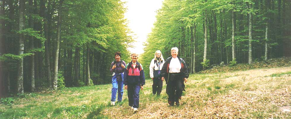 The Monte Amiata nordic walking